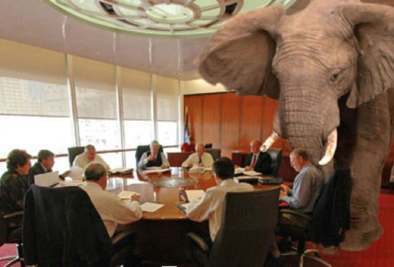 elephant-768x521