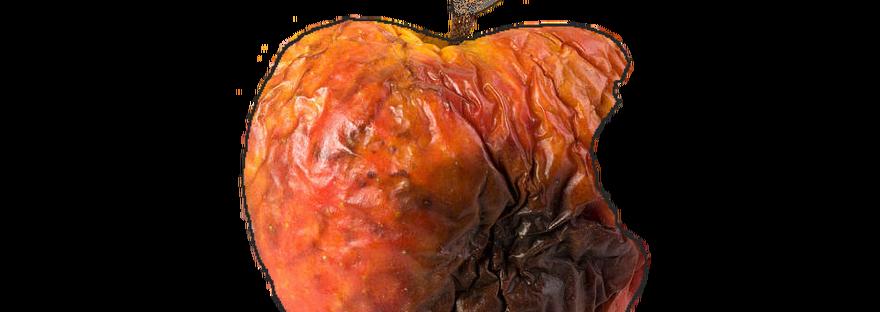 rot-of-apple-1